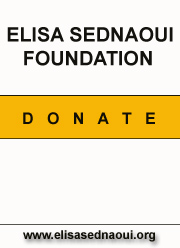 Elisa Sednaoui Foundation donations